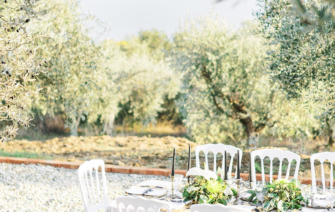 Olive Grove Lake View Wedding for 20-120 guests in Tuscany