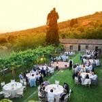 Fattoria di Montelucci in Tuscany