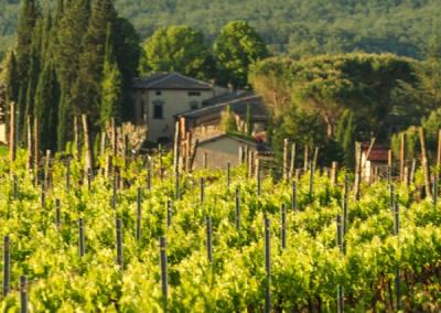 T30-weddingvilla-tuscany-5