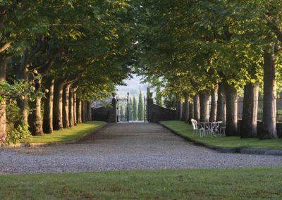 vineyard wedding venue tuscany T30